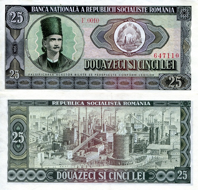 25 Lei  aUNC Banknote